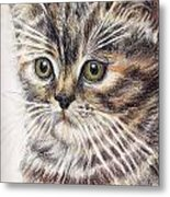 Kitty Kat Iphone Cases Smart Phones Cells And Mobile Cases Carole Spandau Cbs Art 343 Metal Print