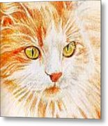 Kitty Kat Iphone Cases Smart Phones Cells And Mobile Cases Carole Spandau Cbs Art 344 Metal Print