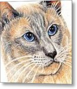 Kitty Kat Iphone Cases Smart Phones Cells And Mobile Cases Carole Spandau Cbs Art 346 Metal Print