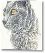 Kitty Kat Iphone Cases Smart Phones Cells And Mobile Cases Carole Spandau Cbs Art 347 Metal Print