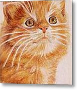 Kitty Kat Iphone Cases Smart Phones Cells And Mobile Cases Carole Spandau Cbs Art 349 Metal Print