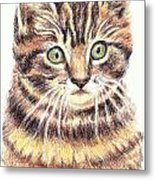 Kitty Kat Iphone Cases Smart Phones Cells And Mobile Cases Carole Spandau Cbs Art 350 Metal Print