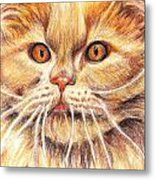 Kitty Kat Iphone Cases Smart Phones Cells And Mobile Cases Carole Spandau Cbs Art 351 Metal Print