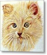 Kitty Kat Iphone Cases Smart Phones Cells And Mobile Phone Cases Carole Spandau 301 Metal Print