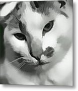 Kitty Kitty Metal Print