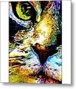 Kitty Nosed Metal Print