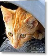 Kitty Under The Hood Metal Print