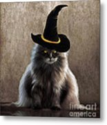 Kitty Witch Metal Print