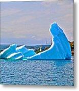 Kneeling Before The Queen Iceberg In Saint Anthony-newfoundland  Metal Print