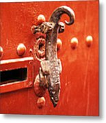Knock Knock Who Is There ---  Liz  Metal Print