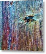 Knotty Plank #1b Metal Print