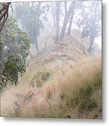 Misty Koa Ridge  Metal Print