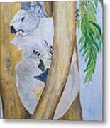 Koala Still Life Metal Print