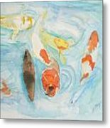 Koi At Japanese Garden 2012 Metal Print