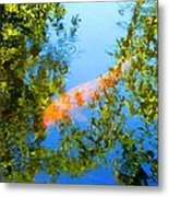 Koi Fish 3 Metal Print