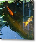 Koi - Oil Painting Effect Metal Print