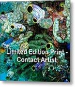 Komodo Island 5 Metal Print