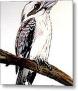 Kookaburra 5 Metal Print