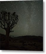 Kookerboom Tree With Milky Way Metal Print