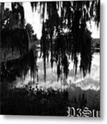 La Chua Trail Metal Print