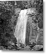 La Coca Falls El Yunque National Rainforest Puerto Rico Print Black And White Metal Print
