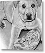 Sneaker Snatcher- Labrador And Chow Chowx Mix Metal Print