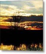 Lacassine Painted Sunset Metal Print