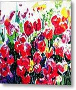 Laconner Tulips Metal Print