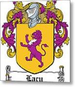 Lacy Coat Of Arms Irish Metal Print
