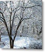 Lacy Snowfall Metal Print