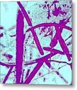 Ladder Metal Print by Dorothy Rafferty