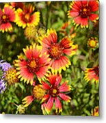 Lady Bird And Her Flowers Metal Print