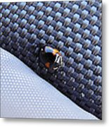 Lady Ladybug And Artificial Surfaces Metal Print