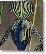 Lady Slipper Secret Garden Metal Print