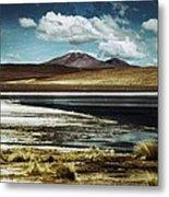 Lagoon Grass Bolivia Vintage Metal Print