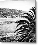 Laguna Beach California In Black And White Metal Print