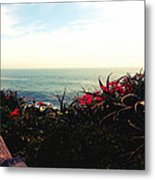 Laguna Beach Seascape Metal Print