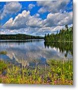Lake Abanakee In Indian Lake New York Metal Print by David Patterson