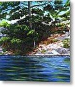 Lake Agnew Metal Print