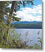 Lake Alva From National Forest Campground Site-yt Metal Print