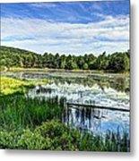 Lake At Acadia National Park Metal Print