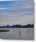 Lake Beach Metal Print