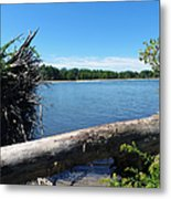Lake Erie At Sheldon Marsh  Metal Print