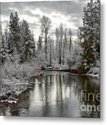 Lake Fork Metal Print