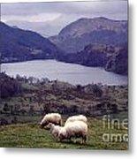 Lake Gwynant Snowdonia Wales Metal Print