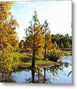 Lake Howard - Fall Color In The Park Metal Print