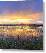 Lake Jackson Sebring Florida Panorama Metal Print