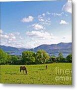 Lake Killarney From Aghadoe Hill County Kerry Metal Print