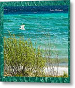 Lake Michigan Seagull In Flight Metal Print
