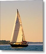 Lake Murray Sc Sailing Metal Print